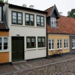 Fedtsugning Odense